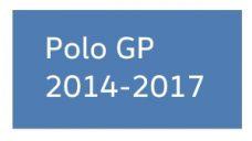 Polo 2014-2017 GP